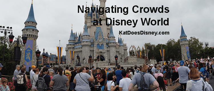 Navigating Crowds at Disney World