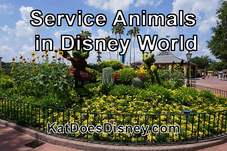 Service Animals in Disney World