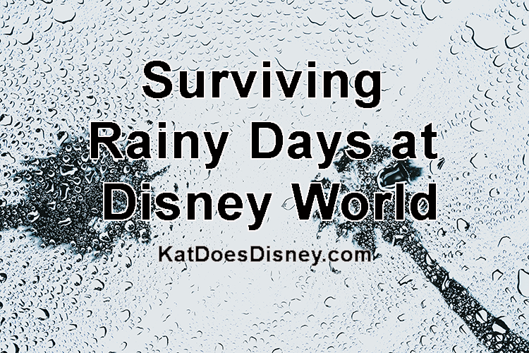 Surviving Rainy Days at Disney World