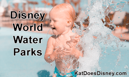 Disney World Water Parks