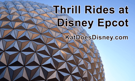 Thrill Rides at Disney Epcot