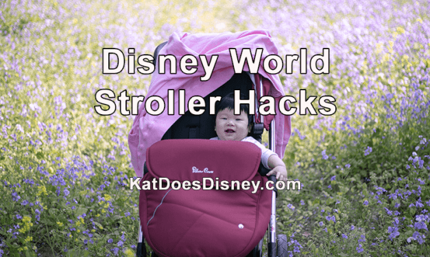 Disney World Stroller Hacks