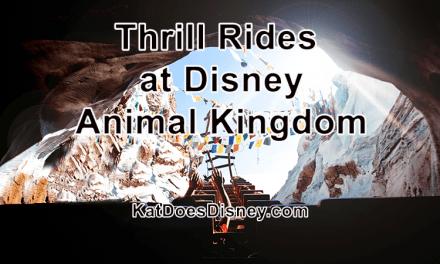 Thrill Rides at Disney Animal Kingdom