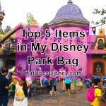 Top 5 Items in My Disney Park Bag