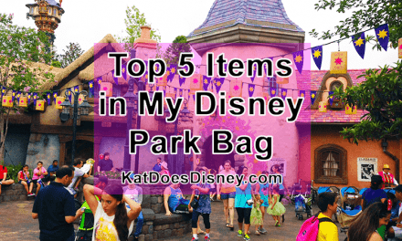 Top 5 Items in My Disney Park Bag