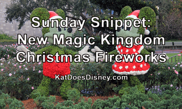 Sunday Snippet: New Magic Kingdom Christmas Fireworks