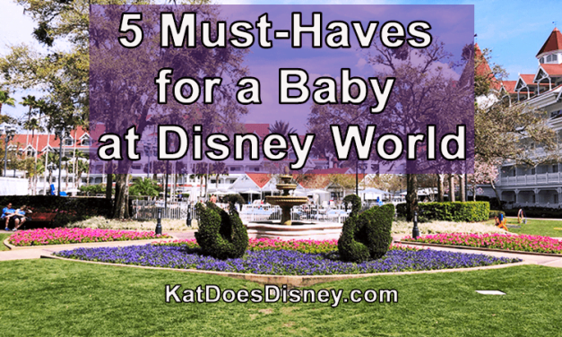 5 Must-Haves for a Baby at Disney World