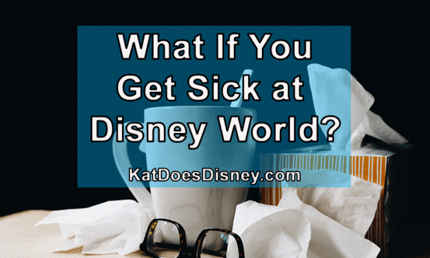 What If You Get Sick at Disney World?