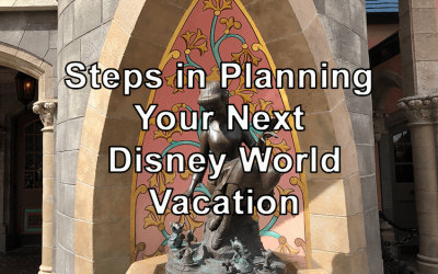 Steps in Planning Your Next Disney World Vacation