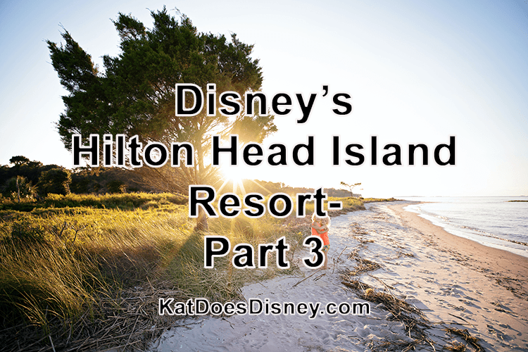 Disney's Hilton Head Island Resort- Part 3