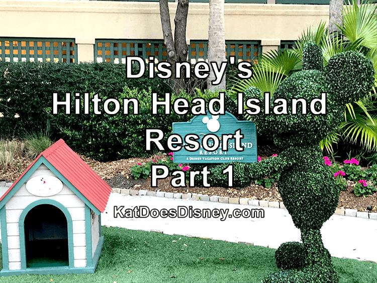 Disney Hilton Head Island