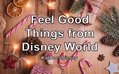 Feel Good Things from Disney World