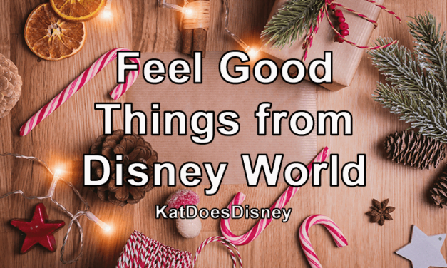 Feel Good Things from Disney World