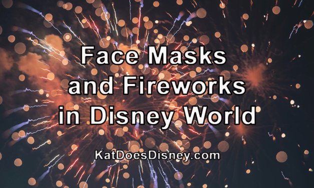 Face Masks and Fireworks in Disney World